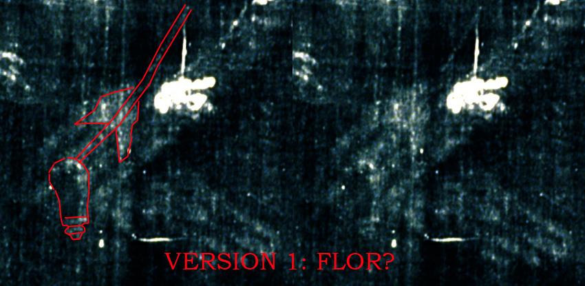 Figure 3. Flower (?) on top of ampulla