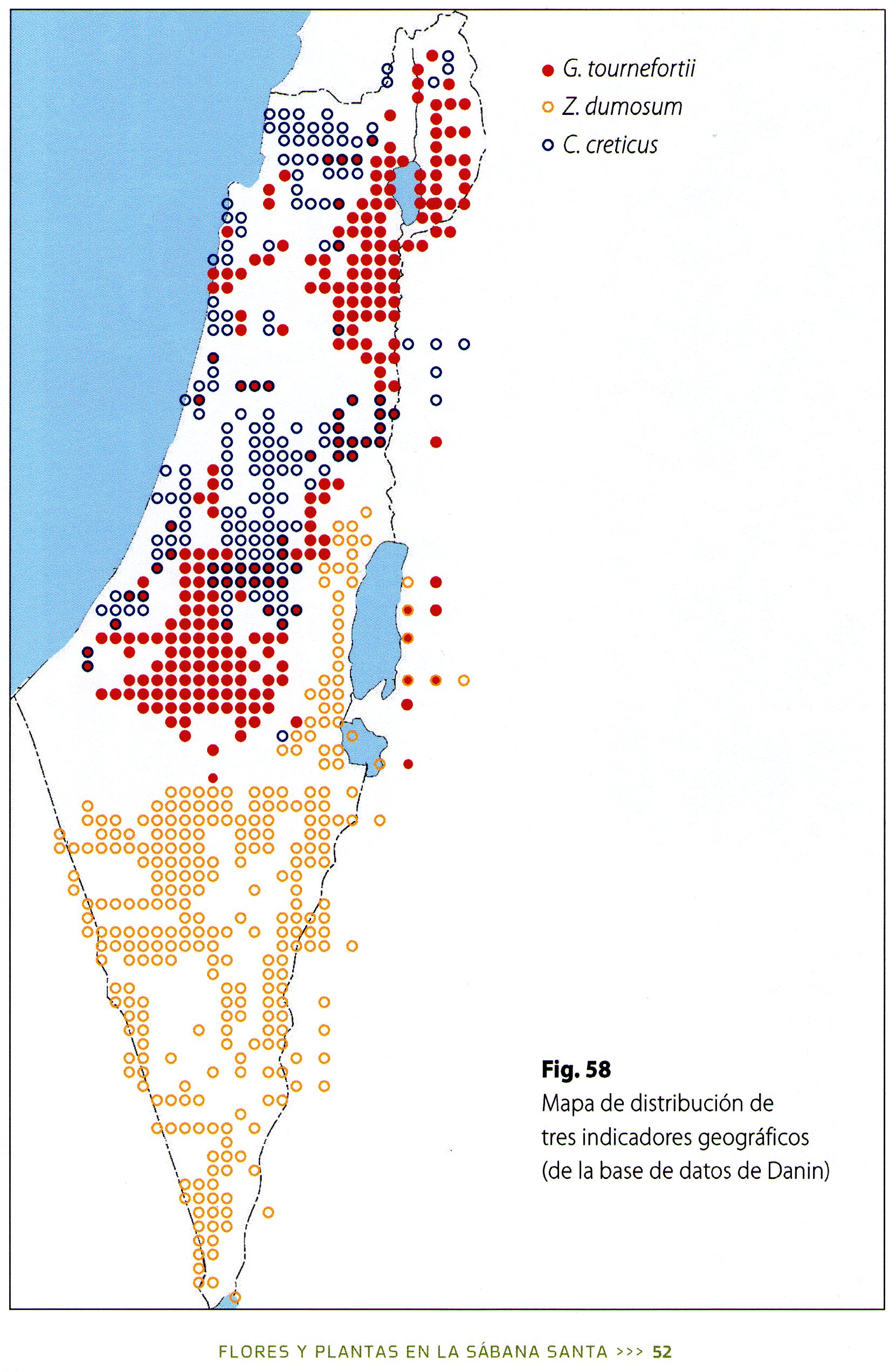 Photo 5. Distribution maps of the three geographics indicators