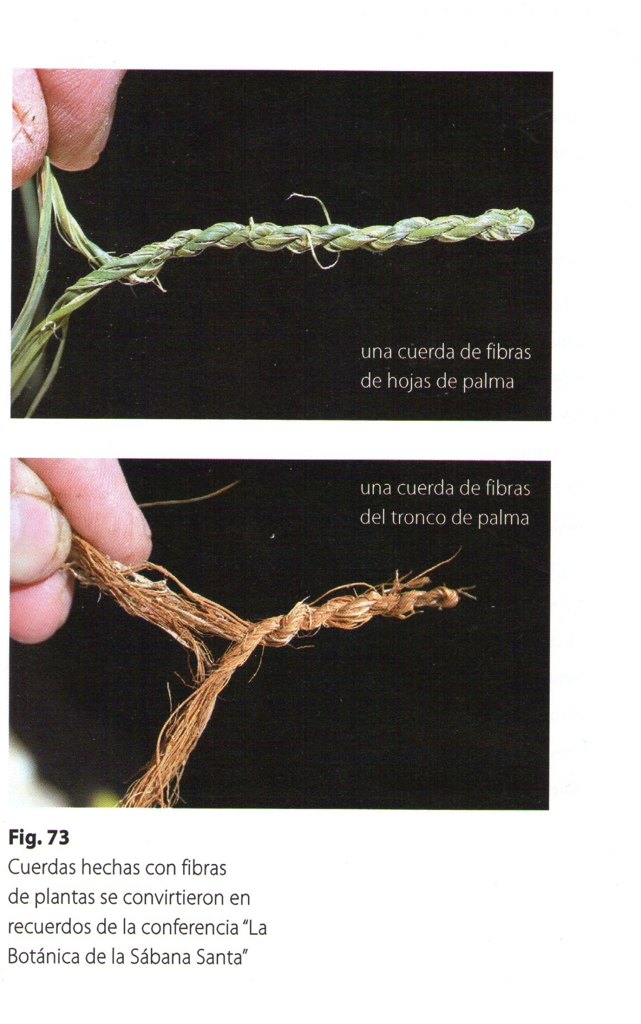 Photo 2 Making of cords/ropes