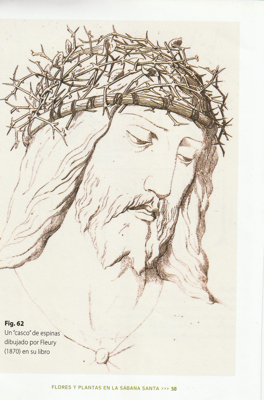 Photo 3. Fleury drawing helmet of thorns