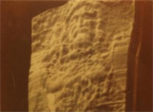 Figure 3 VP8 Image Analyzer with vertical relief under beard