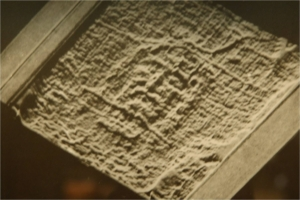 Figure 4. Prof. G. Tamburelli 3D with vertical relief under beard