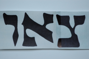 Image 9. Hebrew letters form word TS'ON