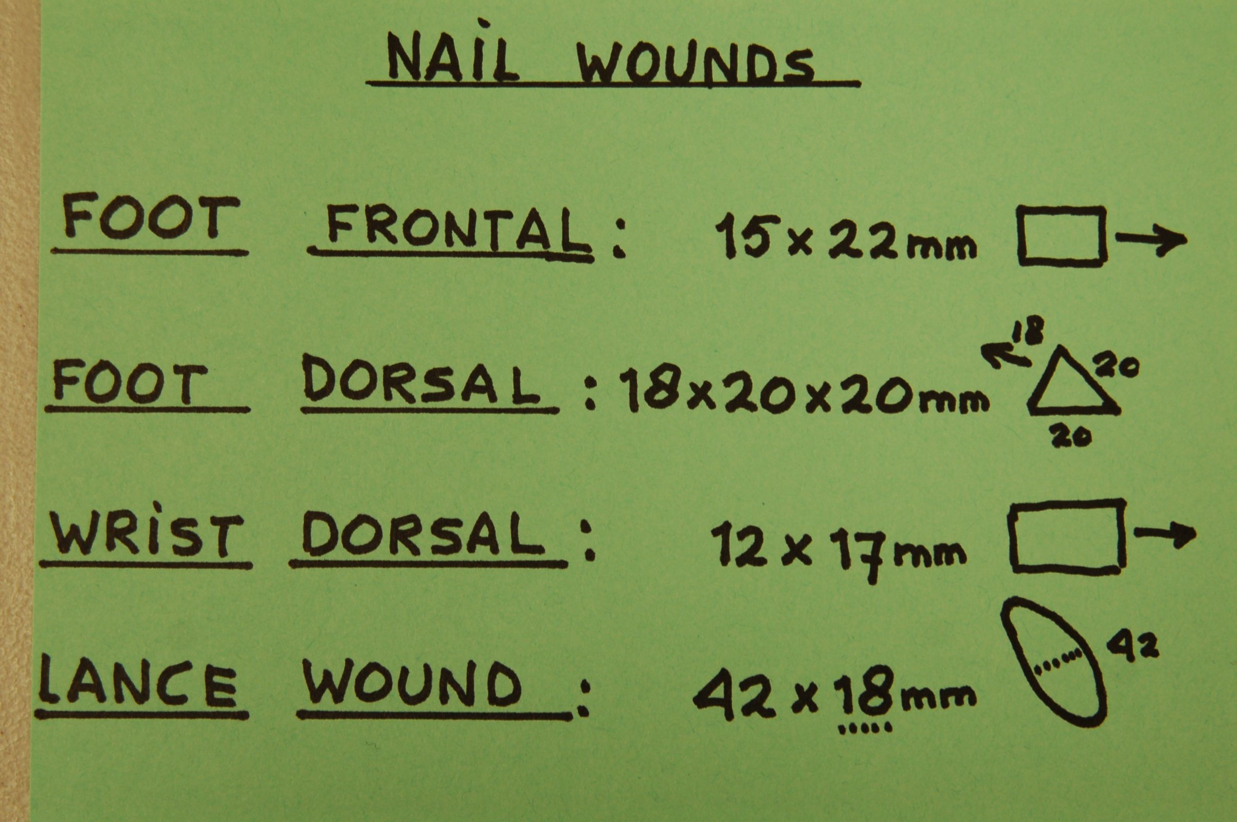 Photo 7. Measurement of spear wound