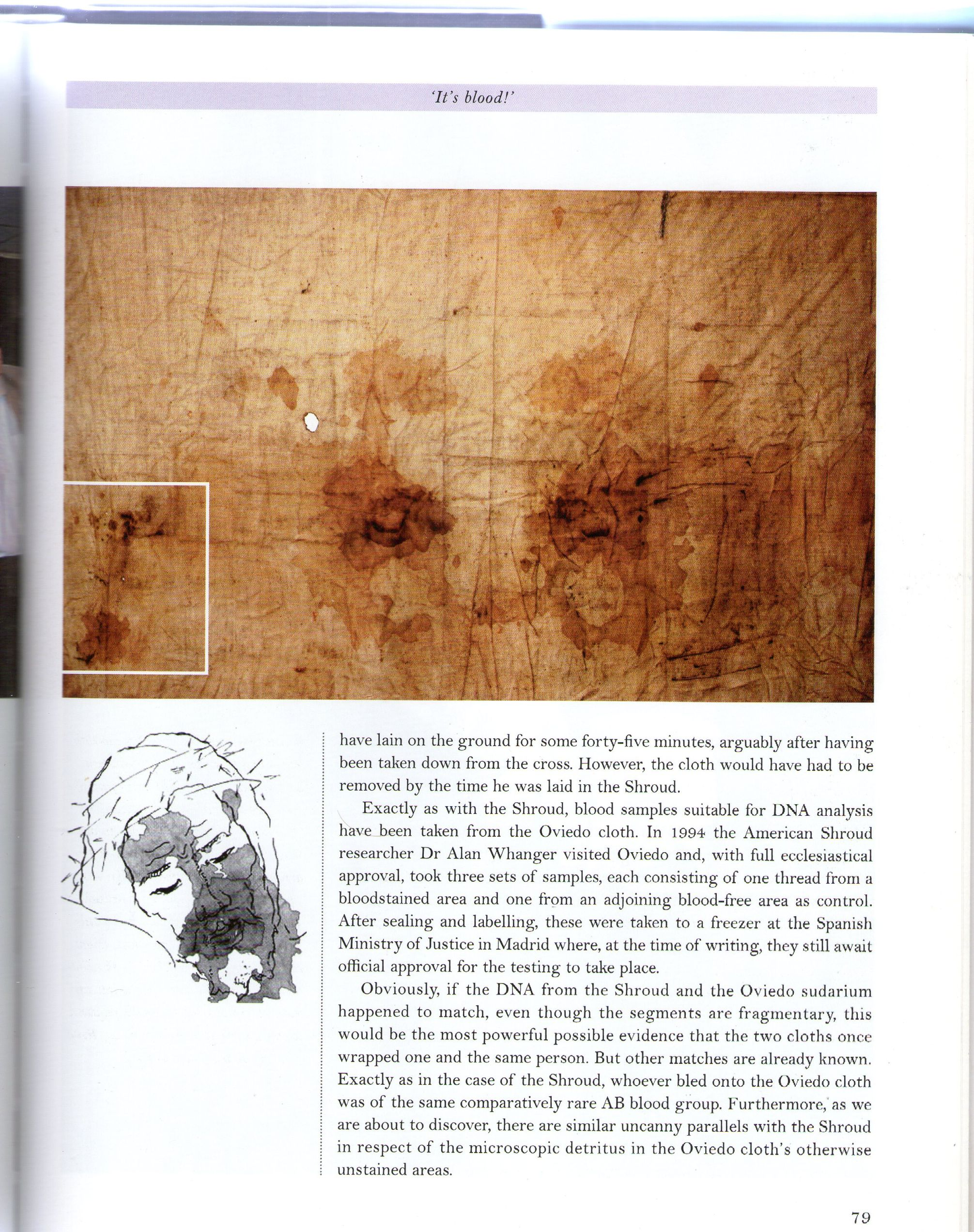 Photo 2. Sudario face image